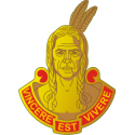 1/101 Field Artillery Decal