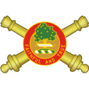 1st Battalion 5th Field Artillery Regiment