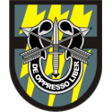 12th Special Forces Group Decal