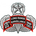 173rd LRS Infantry Detachment  Decal