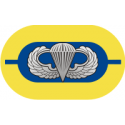 1st Battalion 504th Parachute Infantry Regiment Oval  Decal