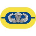 1st Battalion 504th Parachute Infantry Regiment Oval  Decal