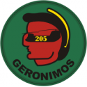 205th Aviation Company -Geronimos Decal