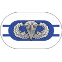2nd Battalion 325th Infantry Regiment Oval with Jump Wings  Decal