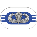3rd Battalion 325th Infantry Regiment Oval with Jump Wings Decal