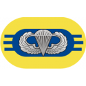 3rd  Battalion 504th Parachute Infantry Regiment Oval Decal