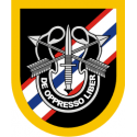 46th Special Forces Group Decal