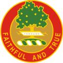 5th Field Artillery Regiment DUI