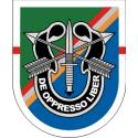 75th Ranger Regiment 1st Battalian Flash - Special Forces
