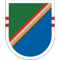75th Ranger Regiment 2nd Battalian Flash