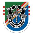 75th Ranger Regiment 3rd Battalian Flash