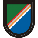 75th Ranger Regiment Flash