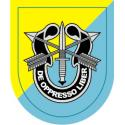 8th Special Forces Group Decal