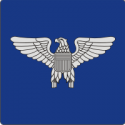 O-6 Colonel Silhouette (Blue) Decal