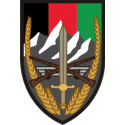 Combined Security Transition Command Afghanistan Decal