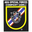 Special Forces 46th Group Decal