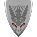 French Foreign Legion - 2 Decal