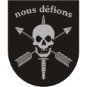 Nous Defions Flash Decal