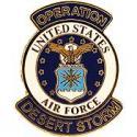 Desert Storm USAF Pin
