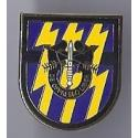 12th Special Forces Group Pin