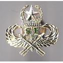 Special Forces Century Wings  Master Pin