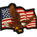 Eagle with Flag Patch