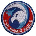 Air Force Space Eagle Patch