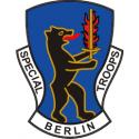 Special Troops Berlin Brigade (Right)  Decal