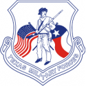 Texas Military Forces Decal