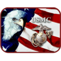USMC Eagle with Border  Decal