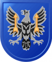 11th Theater Aviation Command Decal