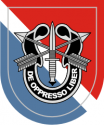 11th Special Forces Group Decal