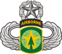 16th MP Brigade - Master Jump Wings  Decal