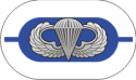 1st Battalion 325th Infantry Regiment Oval with Jump Wings Decal