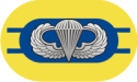 2nd Battalion 504th Parachute Infantry Regiment Oval Decal