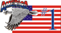 #1 America Eagle & Flag Decal