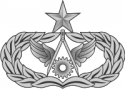AF Senior Civil Engineer Badge (Silver)  Decal