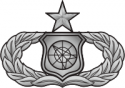 AF Weapons Director Sr  Decal