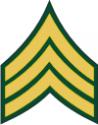 Army E-5 SGT Sergeant