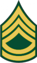 Army E-7 SFC Sergeant First Class