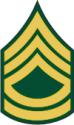 Army E-7 SFC Sergeant First Class
