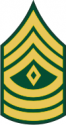 Army E-8 1SG First Sergeant