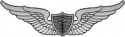Army Flight Surgeon Basic Decal