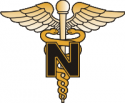 Army Nurse Decal