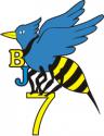 BJU-7 Decal