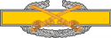Combat Cavalry Badge