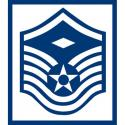 AIR FORCE 1ST SERGEANT E-7 DECAL