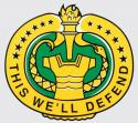 Army Drill Sgt This We'll Defend Decal