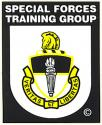 Special Forces Training Group Decal