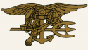 Navy SEAL Team Trident Decal
